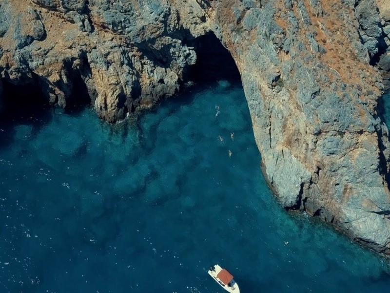 SwimTrek - Marlys Seal