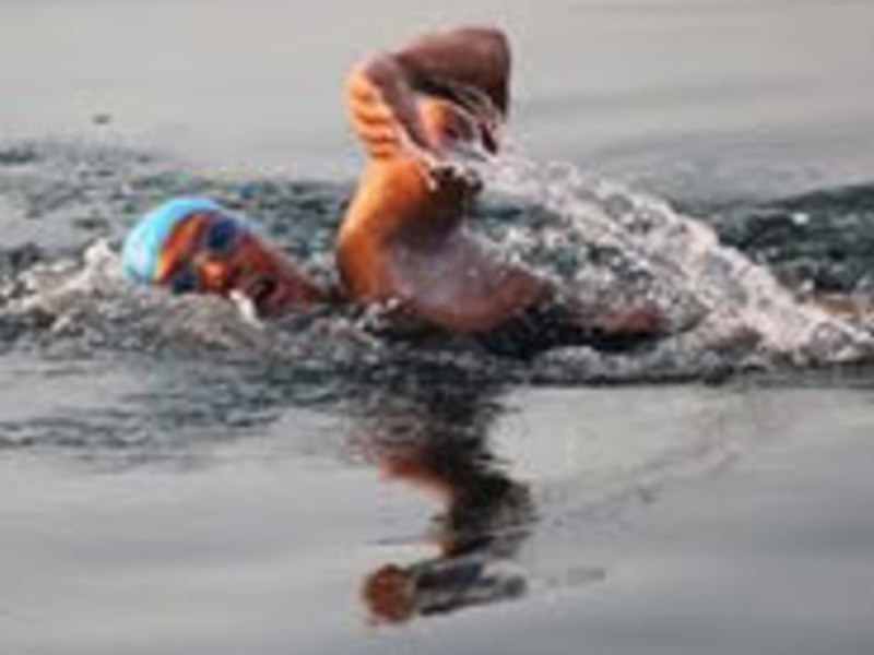 Diana nyad swimming small