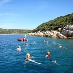 Dalmatian coast short swims croatia