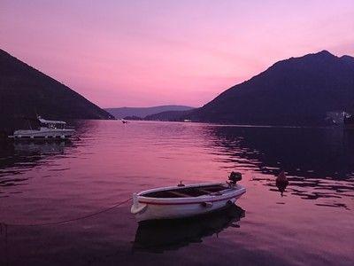 Tasmin purple montengro