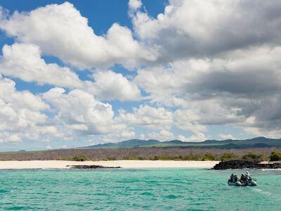 Galapagos islands north seymour 0060