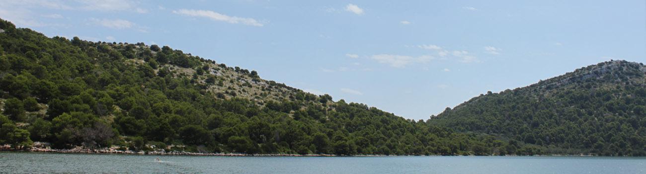 Short swims croatia scaled
