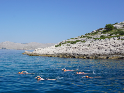 Dalmatian coast croatia small