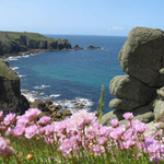 Three coasts of cornwall thumb