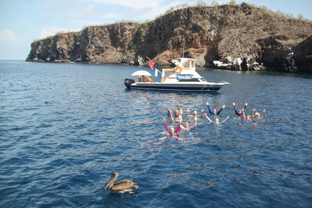 Swimming Holidays Galapagos Islands SwimTrek - Galapagos vacations