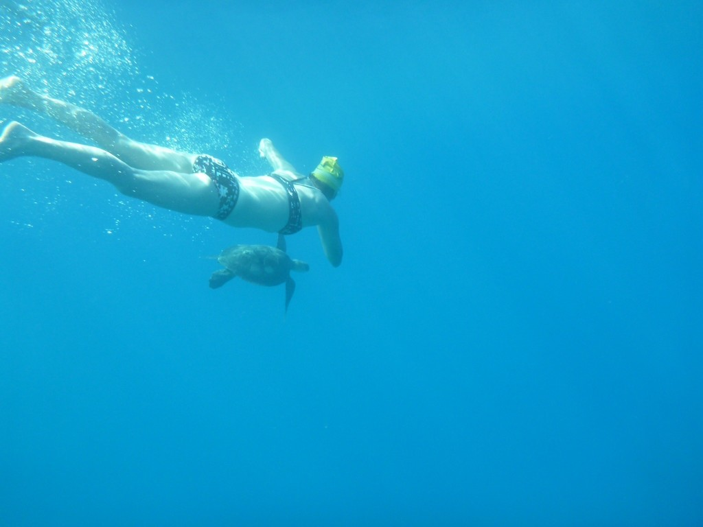 freedive 3
